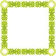 green pattern frame