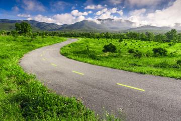 Beautiful countryside road in green field under blue sky