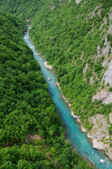Canyon of Tara river