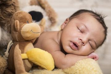 Newborn, Baby, schläft, fell, kuscheltiere