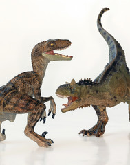 A Battle Between a Carnotaurus and a Velociraptor