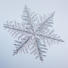 Real macro snowflake lying on glass