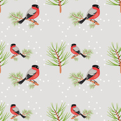 bullfinch seamless background