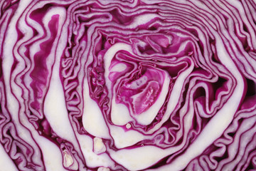 texture of red cabbage close up. macro