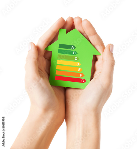 hands holding green paper house
