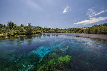 View of Te Waikoropupu Springs at New Zealand's South Island.