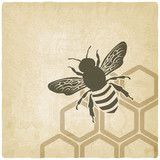 bee old background - vector illustration