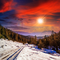 snowy road to coniferous forest in mountains at sunset