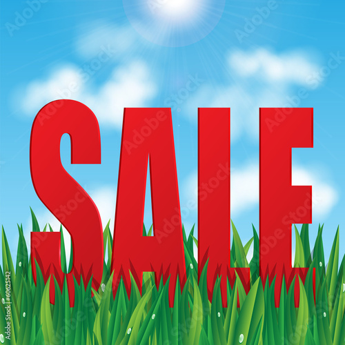 word sale on a background of blue sky and green grass.seasonal s