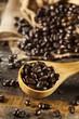 Organic Dark Coffee Beans