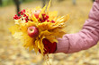 Bouquet of yellow leaves in hand