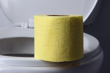 Toilet paper on a toilet, close-up