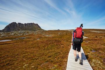 Female hiker on the Overland Trail, Cradle Mountain, Tasmania