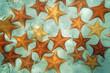 Leinwanddruck Bild - Sandy seabed with starfish in the Caribbean sea