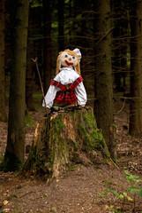 Puppet on a tree stump