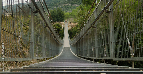hinged bridge. Israel