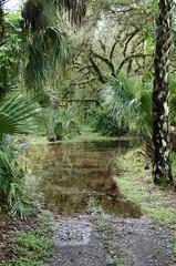 wetlands flooding in florida