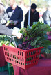 farmers market basket