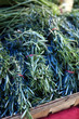 bunches of rosemary