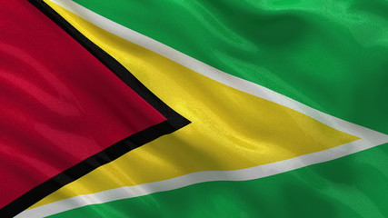 Flag of Guyana waving in the wind - seamless loop