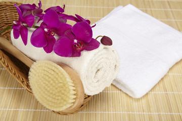 Badebürste und aufgerolltes Handtuch im Korb
