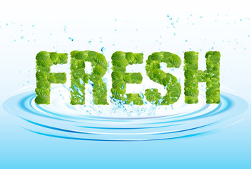 Fresh word leaves of mint, menthol, on fresh water