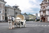 white horse-drawn in carriage - 60640909