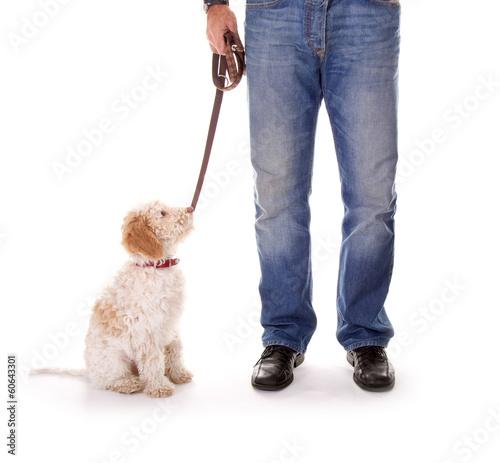 Herrchen mit Hund an der Leine