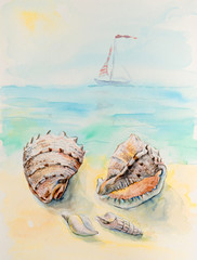 Shells on a beach background, watercolor composition