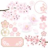 桜 - 60646586