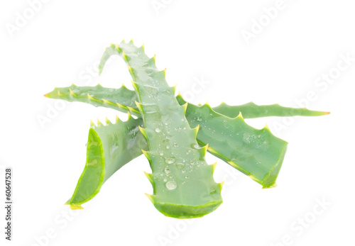 three pieces of aloe vera