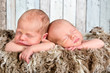 Newborn twin baby faces
