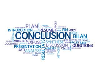 """Nuage de Tags """"CONCLUSION"""" (présentation résultats rapport fin)"""
