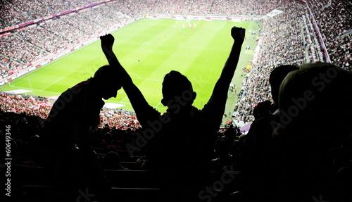 soccer fans stadium - 60649346