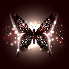 Beautiful Abstract Butterfly