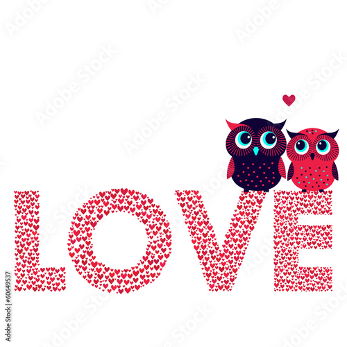 Two cute owls in love