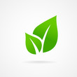 Eco icon green leaf vector illustration isolated - 60652333
