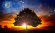 Leinwandbild Motiv Space tree