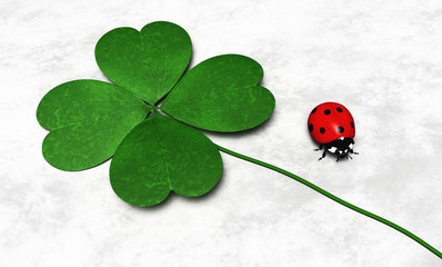 Four-leaf clover and a ladybug