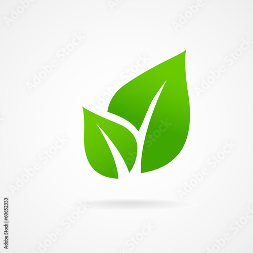 Eco icon green leaf vector illustration isolated