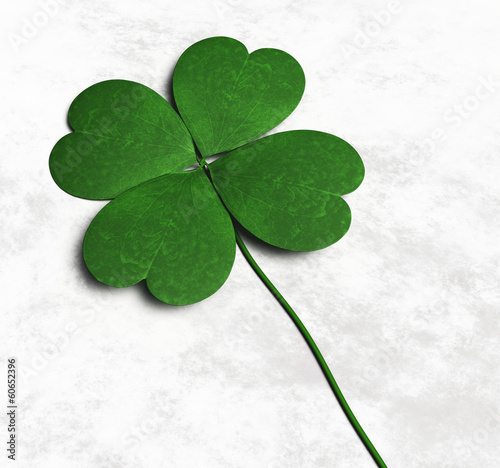 Four-leaf clover on the ground