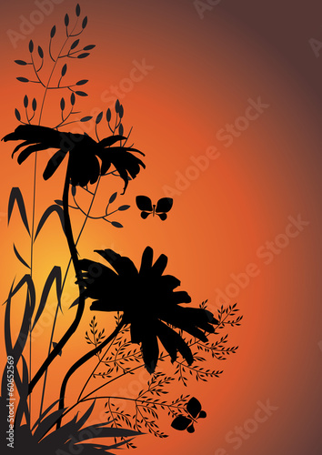 Silhouettes of flowers and herbs against the evening sky