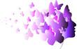 profilo farfalle 2 - 60653903