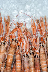 fresh prawns on ice