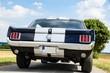 Ford Mustang von hinten