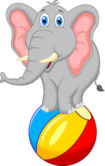 elephant cartoon standing on a ball