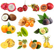Collage of tropical fruits isolated on white