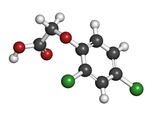 2,4-D (2,4-dichlorophenoxyacetic acid) Agent Orange ingredient.