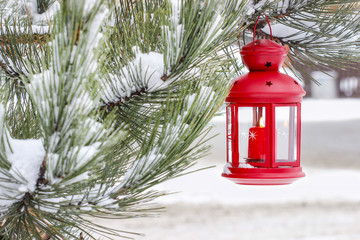 Red lantern hanging on fir branch