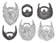 Hand Drawn Beard Set - 60668567